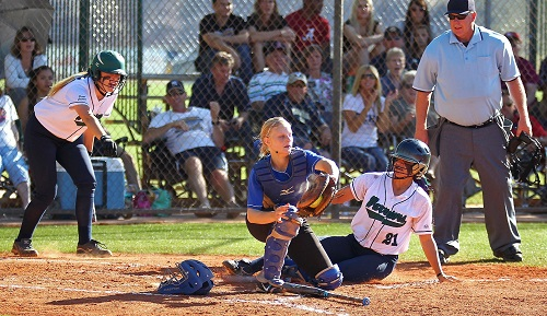 Dixie Softball insurance