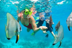 Snorkeling Insurance and risk management